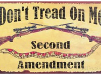 Second Amendment Watch: The Purpose of the Second Amendment against Obama's Planned Executive Order