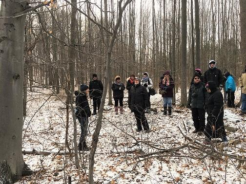 Learn to ID trees while hiking the Niagara Escarpment