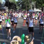 Canal Fest of the Tonawanda's Annual Parade will be held on Tuesday July 17