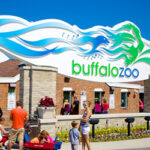 Buffalo Zoo Returns to Normal Operating Hours Beginning September 9, 2020