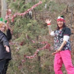 Niagara Falls Residents Decorate Tree at Whirlpool State Park for the Holidays